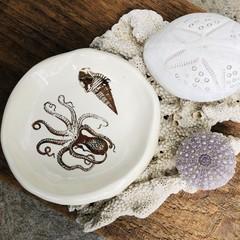 Sea Soul treasure dish🌟