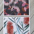 Australiana Mini Card Set - Flora and Fauna 01
