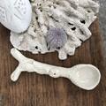 Sea Soul Coral spoon 🧜♂️