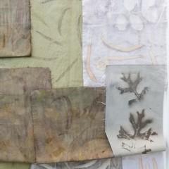 Botanically Printed Textile Pack #5 - Slow Stitch, Art - Plant-Dyed Fabric