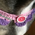 Dressy little crocheted  neck accessory for your kitty or pooch