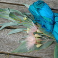 Silk Sari Ribbon ~ * Recycled Silk from India *~ 100gram Skein Blue Green