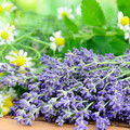 Lavender | Chamomile Eye Pillow - FLOURISH