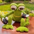 Mr Froggie and flies
