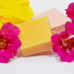 Lilly Pilly Forest Shampoo and Conditioner Bar Set (Small)