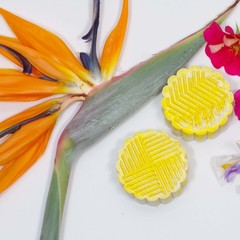 Bird of Paradise Bath Bomb