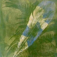 Botanical Gel Prints (6 available)