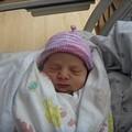 Newborn Gumdrop Beanie - Candy Floss