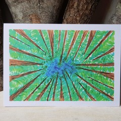 Forest Greeting Cards | $3 from each card has been donated to WWF