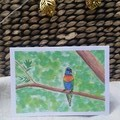 Australian Lorikeet Greeting Cards