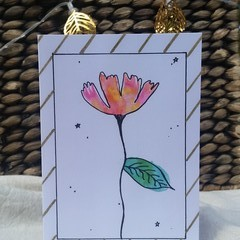 Sunsets and Flowers Greeting Cards