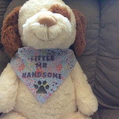 Little Mr Handsome Dog Bandana