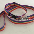 Dog Collar & Lead Sets  Adjustable for Medium to Large Dogs