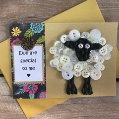 Ewe are special to me card