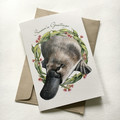 Australian CHRISTMAS cards - NEW pack of 8 - wildlife in a gum leaf wreath