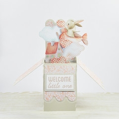 Welcome Little One, Baby Card, Bunny In Plane, 3D Pop Up Card