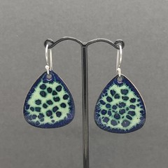 Blue Green cells