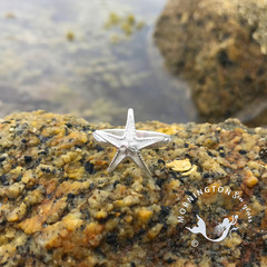 Cast Silver Sea Star Ring