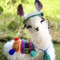 LLama Cushion Handmade Llama Softie