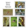 Set of 6 Bird & Flora Photo Greeting Cards