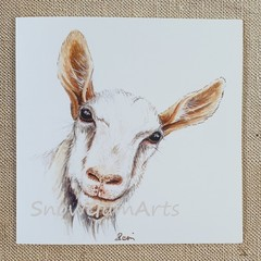 CHEEKY GOAT- Greeting card - Fun cards - Blank cards