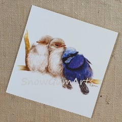 FAIRY WREN and CHICKS - Greeting card - Fun cards - Blank cards