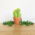 Light Green Crochet Cactus with Yellow Flowers