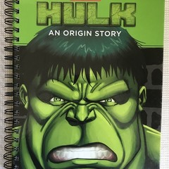 2021  Marvel  Upcycled Diary  -  The Incredible Hulk