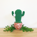 Crochet Cactus with White Flowers in Ceramic Pot