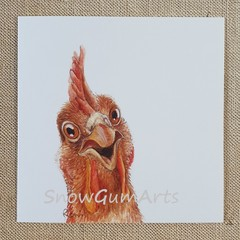 GINGER the CHOOK - Greeting card - Fun cards - Blank cards