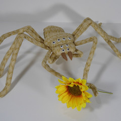 Giant Golden Huntsman Spider Fabric Wire Soft Sculpture