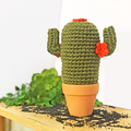 Dark Green Crochet Cactus with Orange Flowers in Terracotta Pot