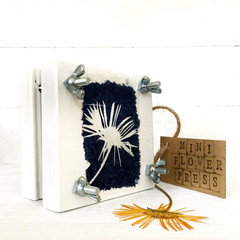 Handmade Mini Flower Press with Botanical Cyanotype Art of  a Calendula Flower