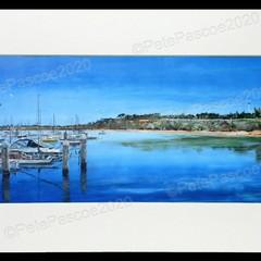 1. Sandringham Yacht Club blue
