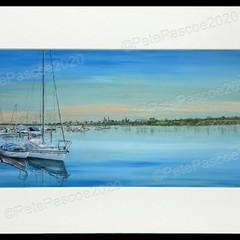 11. Sandringham Yacht Club 3 Boats