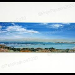 10. Sandy YC Panorama