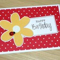 Happy Birthday card -  ladybug