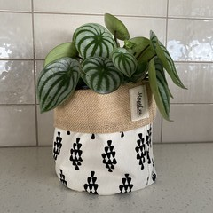 Planter Sacks (small) black/white