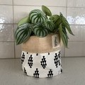Planter Sacks (small) black/white