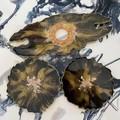 Handmade resin Wine Butler - black and Gold