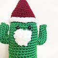 Crochet Santa Cactus