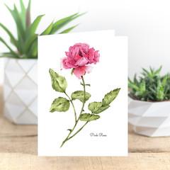Pink Rose Botanical Illustration A6 Greeting Card Blank inside