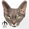 Pet HEAD Portrait - HIGH DEF