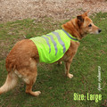 Fab Dog Fluro - Tasmanian Tiger Pet Coat - 2 Sizes - M & L