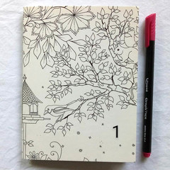 Journal color-in-cover