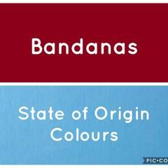 MADE TO ORDER Size XS - XL Dog Bandanas State of Origin Pet Cat NRL Bandana