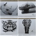 2021 Calendar of Charcoal Sketches