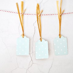 Pale Blue Dot Tags {5w raffia ties}  | Retro Parcel Tags | Blue Winter Tags