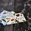Mini Blank Books {3} Christmas Forest | Mini Journals | Mini Notebooks | Forest