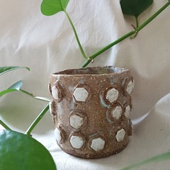Ceramic Hexagon Button Plant Pot